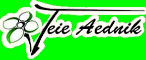 Aednik logo